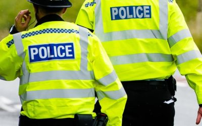 Woman punched during burglary