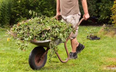 Gardener vacancy