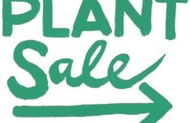 WEST STOUR VILLAGE PLANT SALE