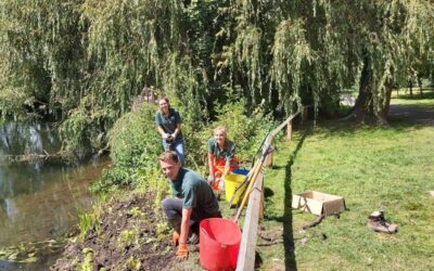 Wildlife-friendly river bank created