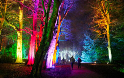 Tunnel of light planned for Christmas