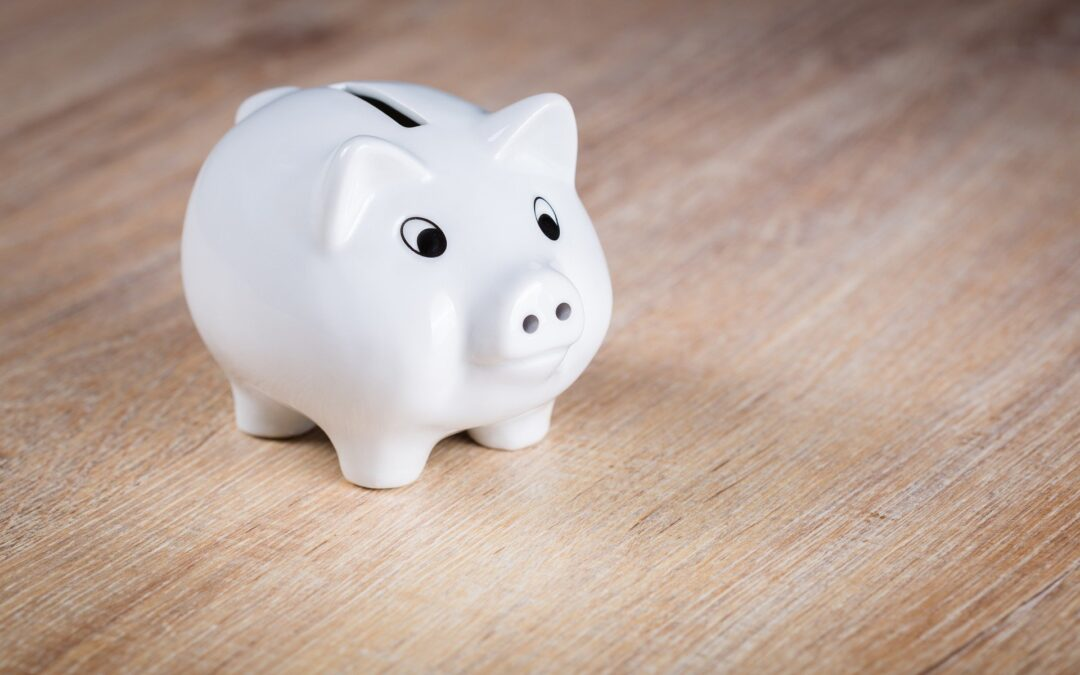 Making the piggy bank earn money