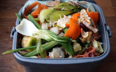 Free seminar on food waste